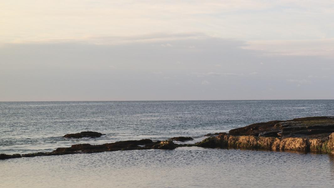 1_austinmer_beach__marcus_piper